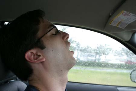 asleep_at_the_wheel